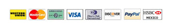 Visa, MasterCard, Discover, American Express, Dinners, JCB, Debit/Credit cards and Western Union